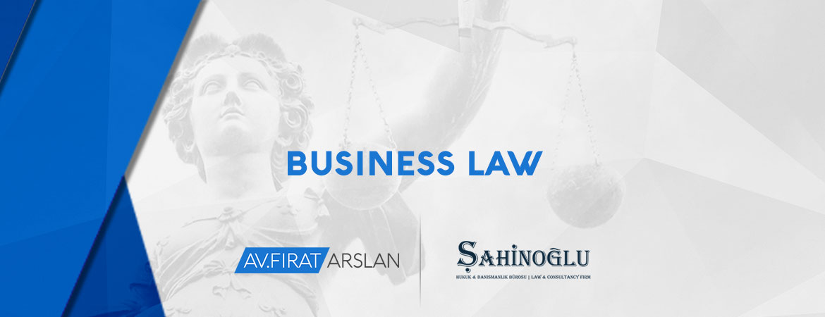 working-areas-07-business-law
