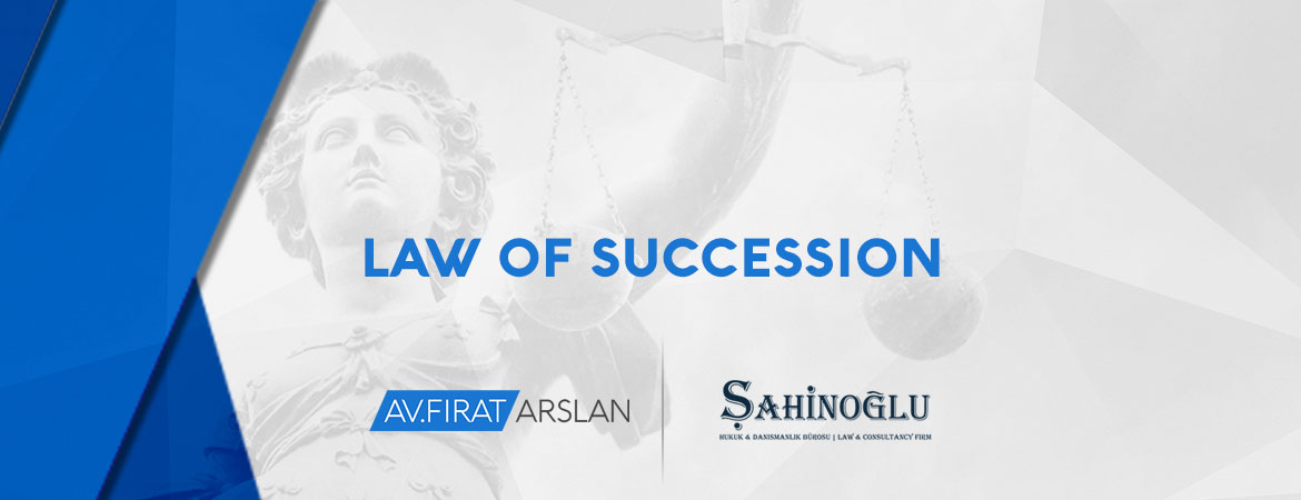 working-areas-08-law-of-succession